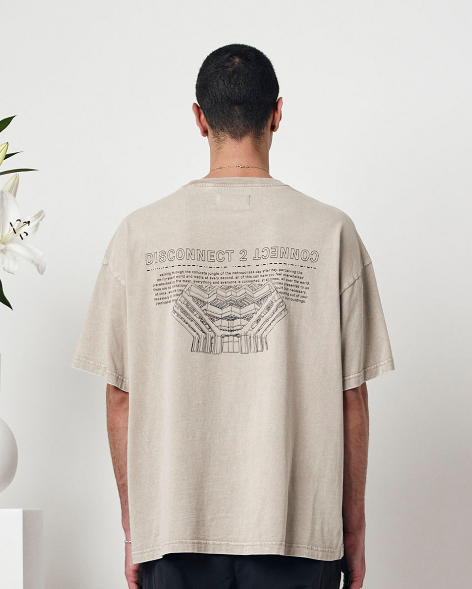 Painted Library T